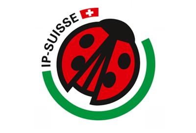 IP-Suisse